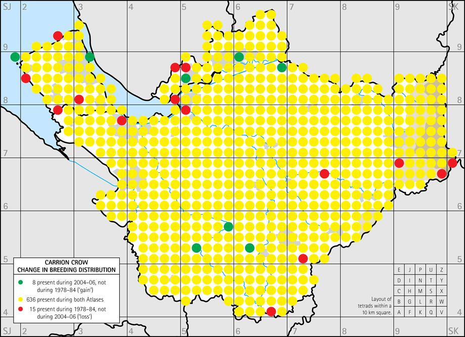 Carrion Crow Breeding Distribution Maps